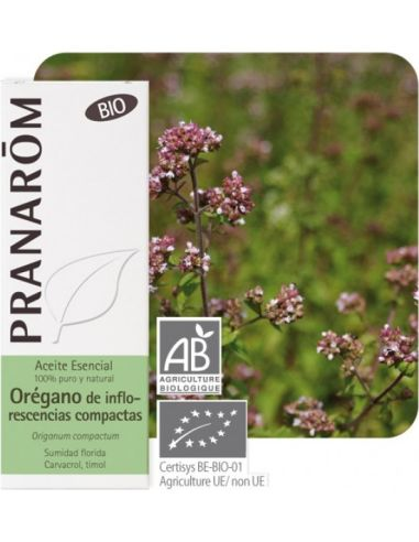 Olejek eteryczny oreganowy **Oregano / Origanum compactum** 10ml*PRANARÔM*BIO