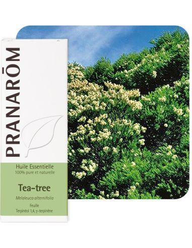 Olejek eteryczny **Drzewo herbaciane...